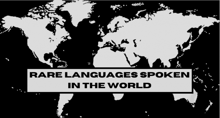 Rare Languages in the World